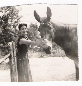 Photo caption of an old photo of a young woman petting a mule