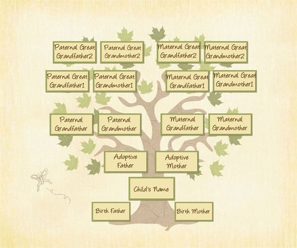 Adopted Genealogy: A different family tree - Treasure Chest of ...