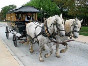 Horses clopping